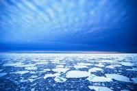 A photograph of the Arctic ice, Patrick Kelley, http://www.flickr.com/photos/usgeologicalsurvey/4370267907/in/set-72157623467470824CC by 2.0